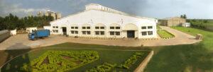 FORTIA PP Bag Plant